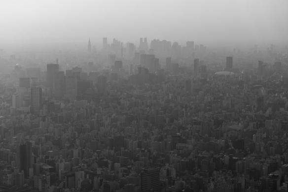 Skytree 1